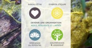 Accompagnement et Formation en l'Intelligence Collective